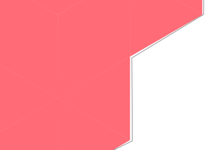Drawing a line around the rough border of the shape